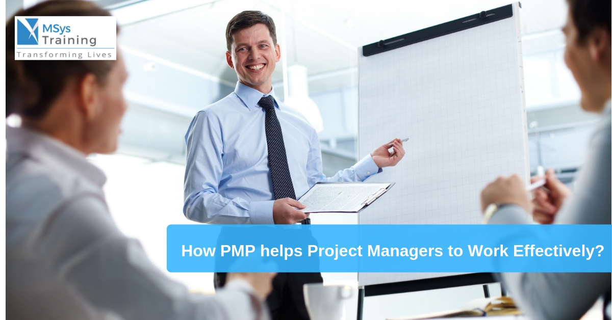 project managers pmp