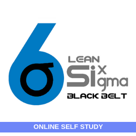 Lean Six Sigma Black Belt-Online-Self-Study-MSysTraining
