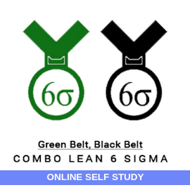 Combo Lean Six Sigma Green Belt Black Belt-Online-Self-Study-MSysTraining