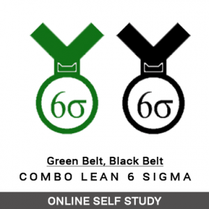 Combo Lean Six Sigma Green Belt and Black Belt - Online Self Study - OSS