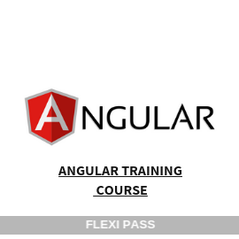 Angular Training Course-Flexipass