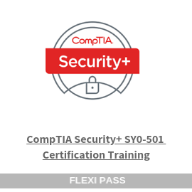 CompTIA Security+ SY0-501 Certification Training-Flexipass