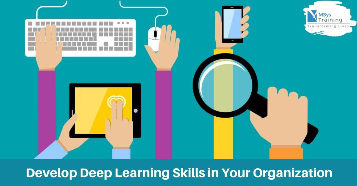 Develop Deep Learning Skills in Your Organization - Msys