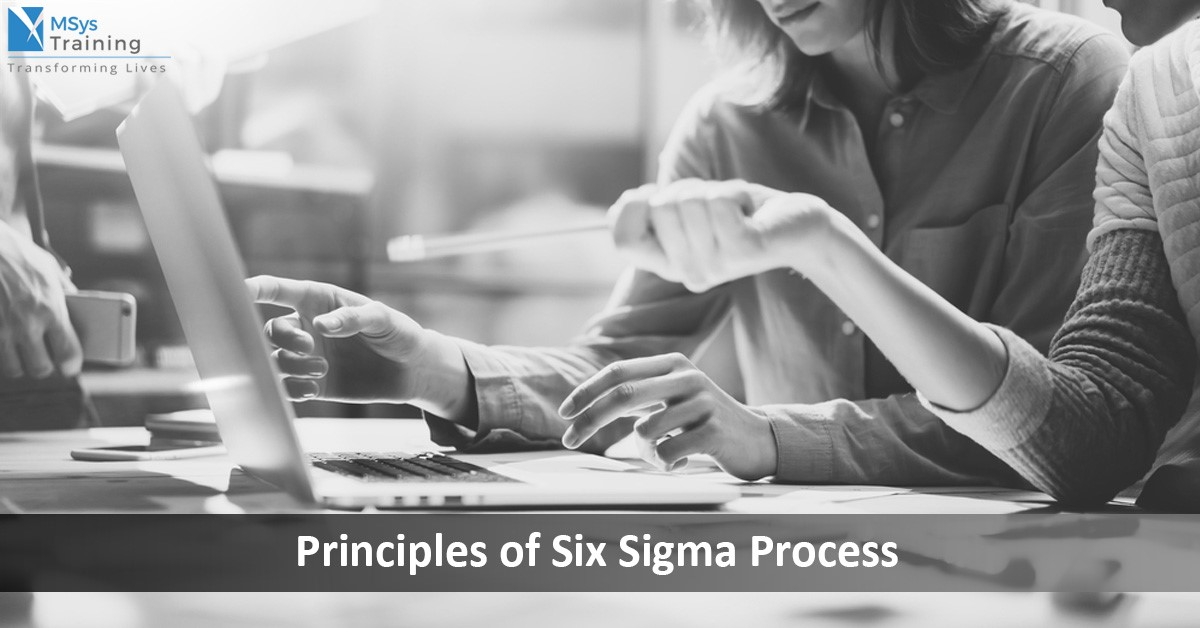 principles of six sigma process