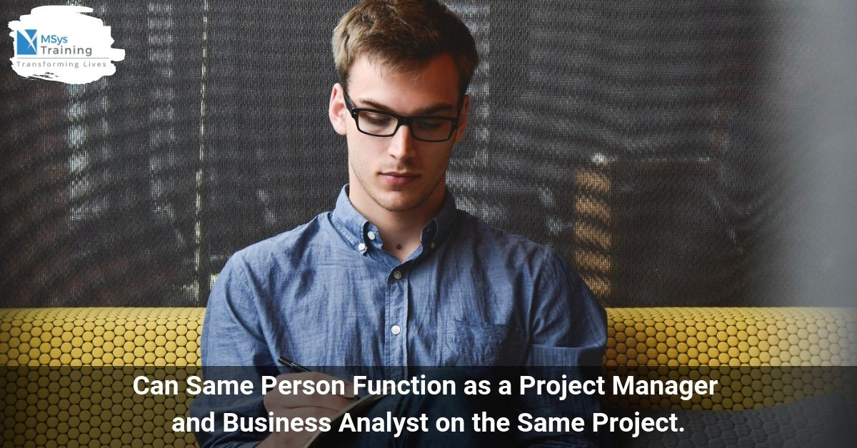 project manager and business analyst