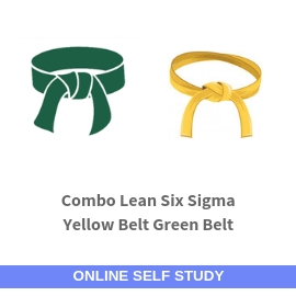 Combo Lean Six Sigma Yellow Belt and Green Belt
