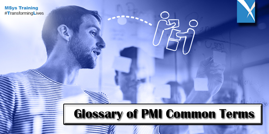 Glossary of PMI Common Terms