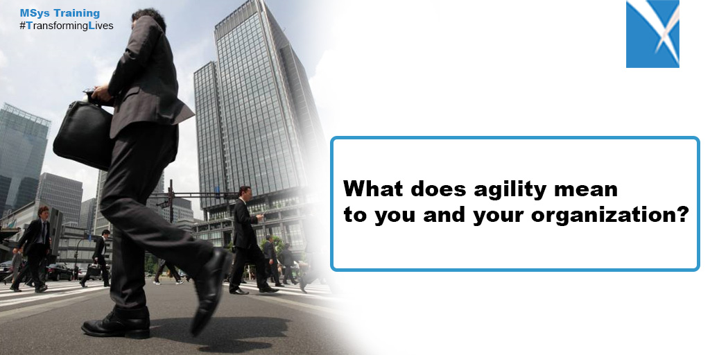 What does agility mean to you and your organization?
