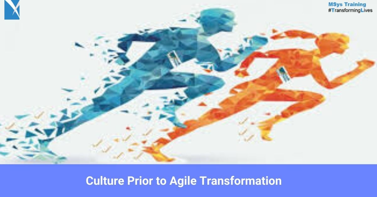 Msys Training/ Culture Prior to Agile Transformation